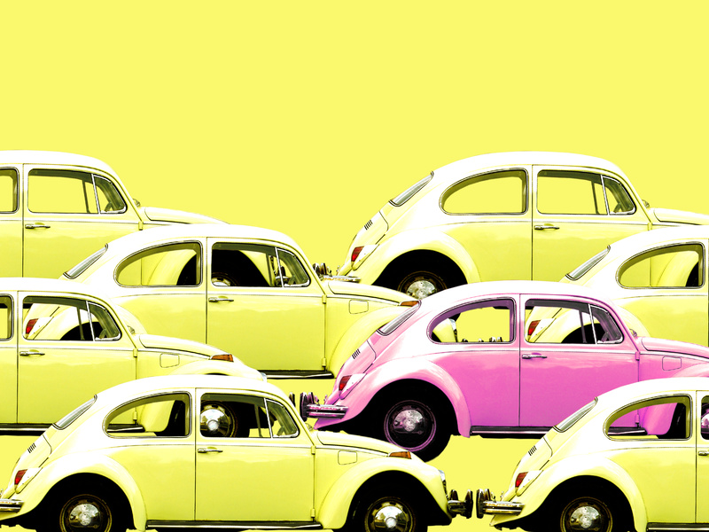 Yellow and Pink Bugs